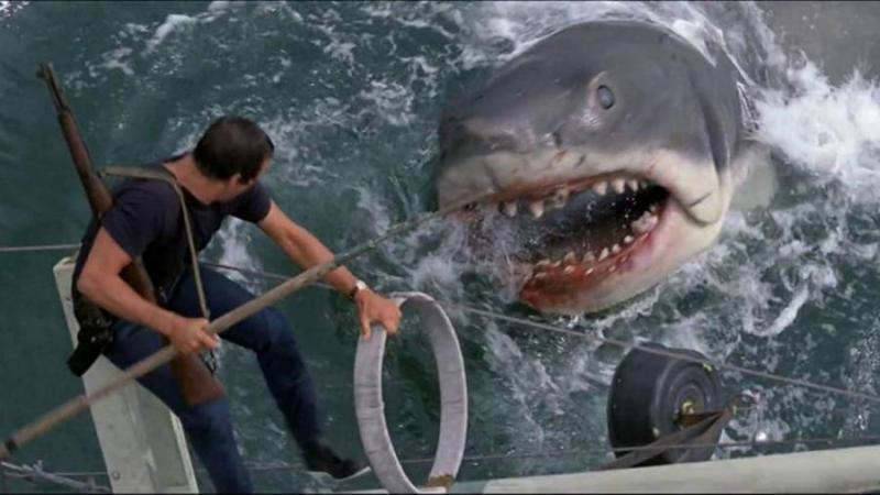 https___cdn.cnn_.com_cnnnext_dam_assets_190627154653-007-highest-grossing-films-jaws.jpg
